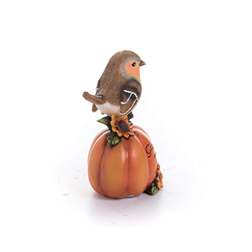 Transpac Imports D0637 Resin Bird with Harvest Pumpkin Figurines, Orange