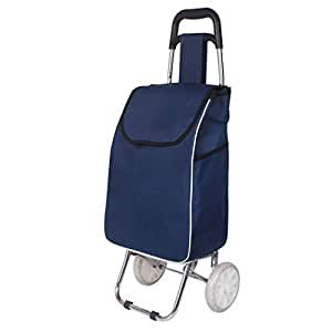 Folding Shopping Trolley 2 Wheel Lightweight Push Pull Shopping Cart Bag Luggage Stainless Steel Grocery Trolley, Max Capacity 30L (Color : Blue)