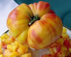 Heirloom Tomato Old German by Stonysoil Seed Company Luscious Bi-Color ()