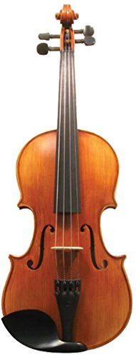 Corde di Salice CS135VN1/2 Advanced Beginner Violin Package - Terzo, 1/2 by Corde di Salice