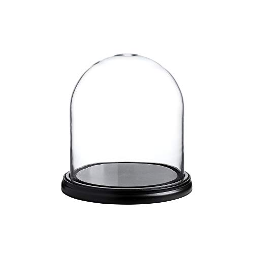"""Whole Housewares Decorative Clear Glass Dome/Tabletop Centerpiece Cloche Bell Jar Display Case with Black MDF Base, 8"""" D X 9"""" H"""
