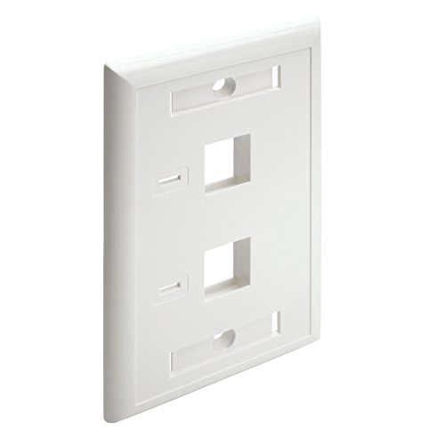 Tripp Lite Dual Outlet RJ45 Universal Keystone Face Plate / Wall Plate White, 2-Port(N042-001-WH) (Dual Faceplates)