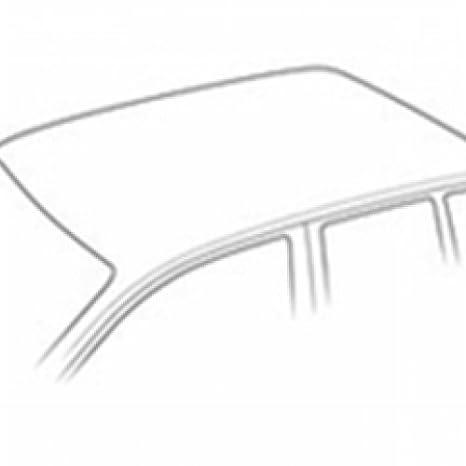 Rameder Komplettsatz 118767-11519-1 Dachtr/äger Tema f/ür Skoda Rapid Spaceback