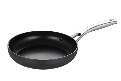 EPPMO 8 Inch Hard-Anodized Aluminum Fry Pan,Nonstick Frying Pan,Stainless Steel Handle, Dishwasher & Oven Safe (8 Inch Fry Pan)