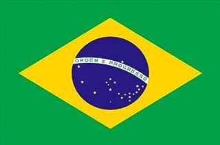 product image for 3' x 5' Brazil Flag - Nylon