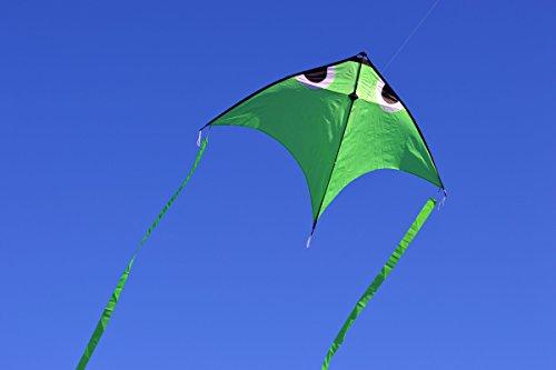 Flying Fish Kite - 1
