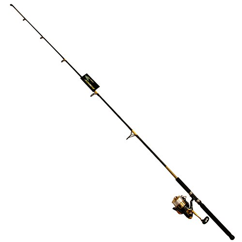 Yellow Gold Master - Master Fishing Tackle DN415-WL #350 Combo Reel, Black/Yellow/Gold
