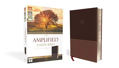 The Amplified Study Bible, Leathersoft, Brown [Large Print] Imitation Leather – February 21, 2017