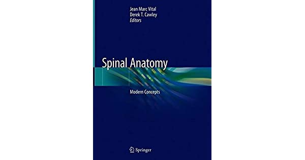 Image result for spinal anatomy modern concepts