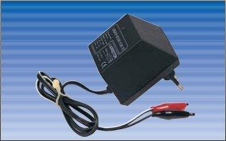 Ariston Cargador baterias Plomo 12V: Amazon.es: Electrónica