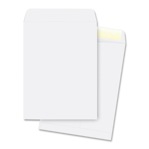 Catalog Envelopes, Plain, 28 Lbs, 9-1/2'x12-1/2'', 250 per Pack, White by Business Source