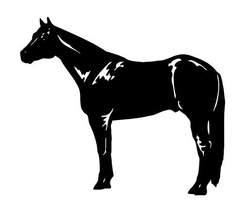 Quarter Horse Decal - 4