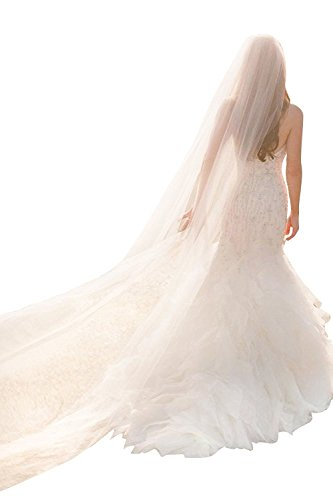 0609072be7 3 Meters Long One Layer Soft Tulle Cathedral Bridal Wedding Veil with Comb  (3M