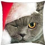 Cute christmas cat - Throw Pillow Cover Case (18
