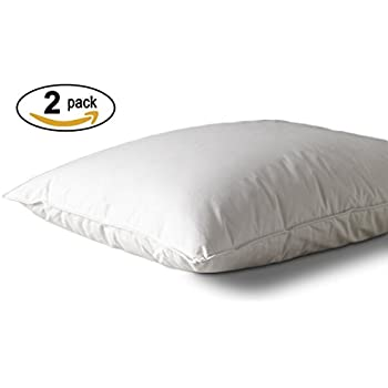 Westin Hotel Pillow   Hypoallergenic Down Alternative   Feather Free And  Down Free   Official Westin
