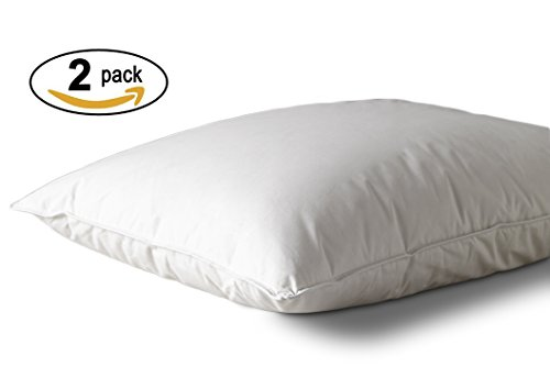 Westin Hotels Pillow - Hypoallergenic Down Alternative - Fea
