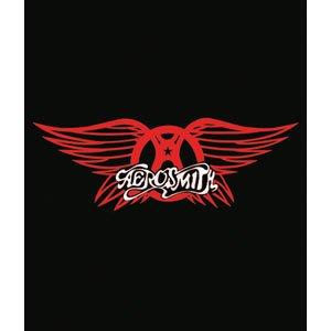 Amazon.com: Aerosmith Logo Queen Size Mink Blanket Hard