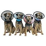 Company Of Animals Smart Collar Rigid Elizabethan - Size 3