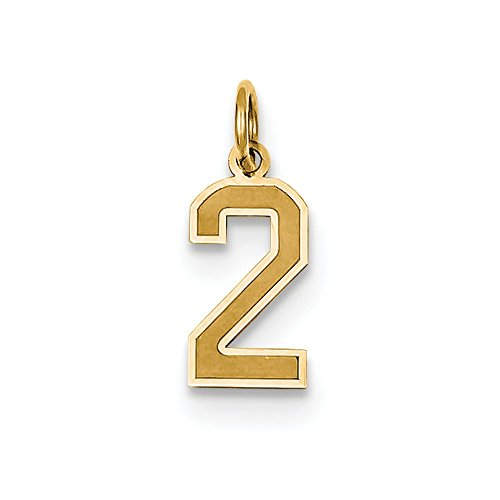 Satin Number 2 Charm - 14k Yellow Gold Laser-cut Small Satin Number 2 Charm - Measures 18.3x7.3mm