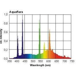 Giesemann PowerChrome AquaFlora 48