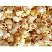 Bulk Grains 100% Organic Yellow Popcorn Bulk 25 Lbs by Grains ()