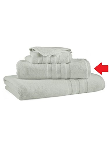 Polo Ralph Lauren Palmer Bath Pale Surf Hand Towel 16