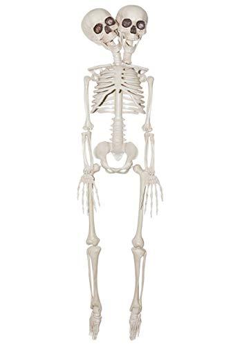 Siamese Twin Halloween Costume (Sunstar Industries 2-Headed Plastic Skeleton Prop 20in, Siamese)