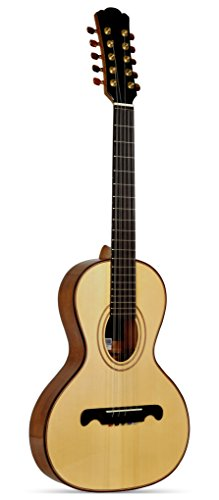 Giannini VSC-4 Professional Handcrafted 10-String Viola with Solid Sitka Spruce Top and Hard Case by Giannini