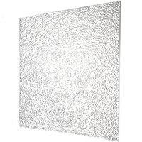 Plaskolite Lighting Panel 2 ' X 4 ' Prismatic Acrylic Clear