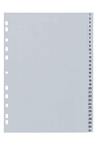 Kunststoffregister Register 1-31 Monat Tag Registerblätter DIN A4 Ordner Grau