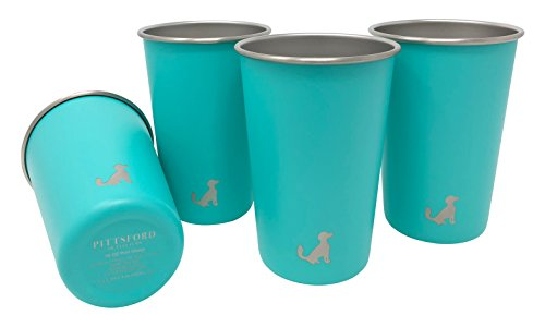 Pittsford Outfitters 16oz Single Wall Stainless Steel Cups / Pint Glasses, set of 4 (Turquoise)
