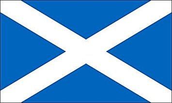 (GHaynes Distributing MAGNET Scotland Flag Magnet(scottish st andrews cross) Size: 3 x 5 inch)