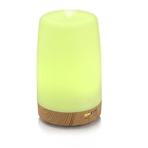 Essential Oil Diffuser Portable Mini 100ml Travel Air Humidifier Ultrasonic Aromatherapy for office home at - In Touch Spa My Orange