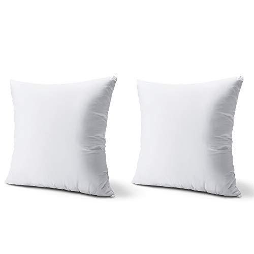 Plehoth Set of 2 Throw Pillow Inserts 18 x 18 Super Soft Microfiber Filled Decorative Pillow Cushion,Sham Stuffer