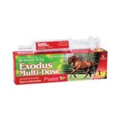 Exod 47.2G Equine Paste