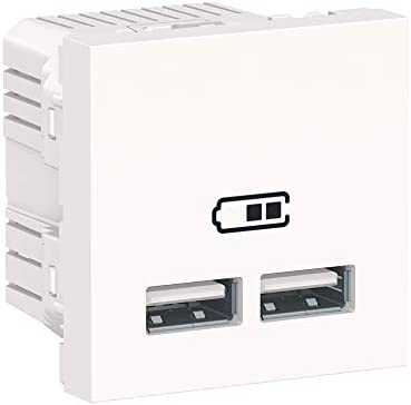 Schneider Electric NU341818 Cargador Doble Usb 2,1A 1 ...