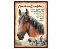 Wildlife Playing Cards ( Mustang Horse )