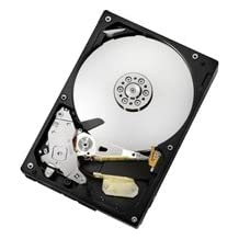 Hitachi Deskstar 7K1000.C 1 Terabyte (1TB) SATA/300 7200RPM 32MB Hard Drive
