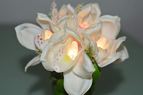 FANStek LED Lighted Artificial Orchid Flower Arrangement-Battery with Green Leaves (White Singapore Orchid)