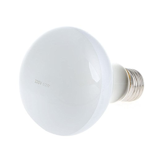 60w Spotlight (Stebcece 220V 25/40/50/60/75/100W Reptile UVA Poly Sand Light Lamp Bulb Spotlights Warm (60w))