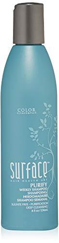 (Surface Purify Shampoo 8 oz)