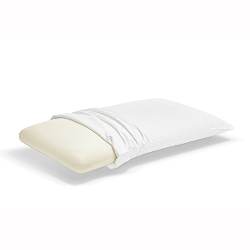 Sleep Innovations Memory Foam Classic Pillow Standard New