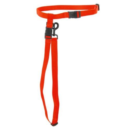 Max & Zoey 1-Inch Wide Double Dog Leash, Bright orange