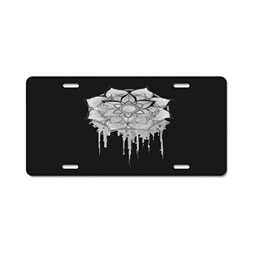 - Chik yx Personality License Plate Frame Mandala Drips Collection Aluminum License Plate, Front License Plate