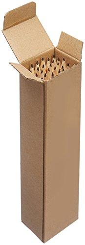 AmazonBasics-Presharpened-Wood-Cased-2-HB-Pencils