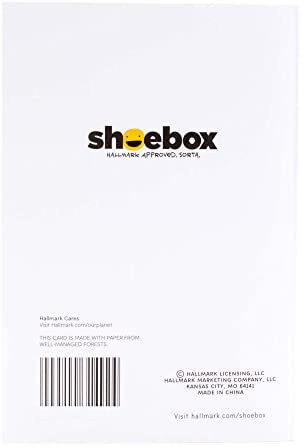 Hallmark Shoebox Funny Anniversary Card, Valentines Day Card, Love Card for Significant Other (Waffles Joke)