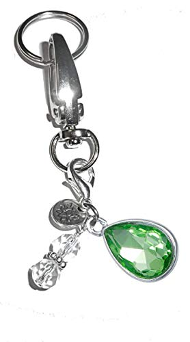 Birthstone Charm Key Chain Ring, Women's Purse or Necklace Charm, Comes in a Gift Box! (August)