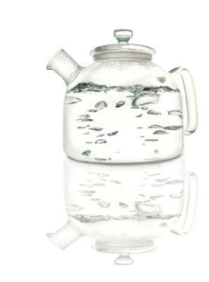 Teavana Alasdair Glass Tea Kettle