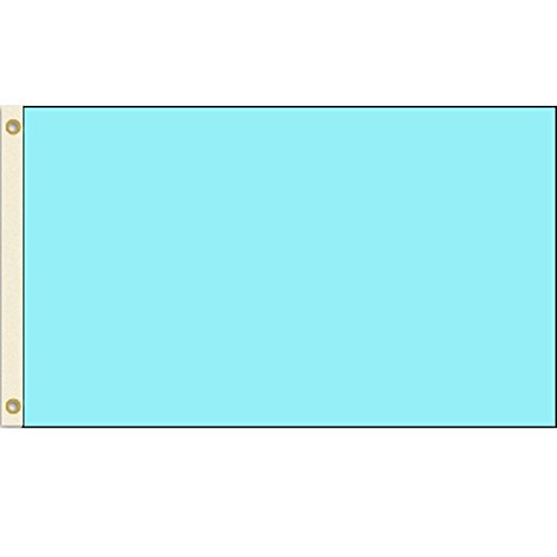 Solid Light Blue 2x3 Polyester Flag