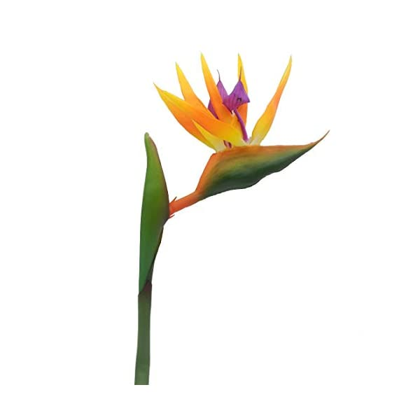 Maylife-32-Real-Touch-Bird-of-Paradise-Artificial-Flowers-Bouquet-for-Home-Garden-DecorationWedding-Party-Decor-Orange-Package-Quantity-5-Stems
